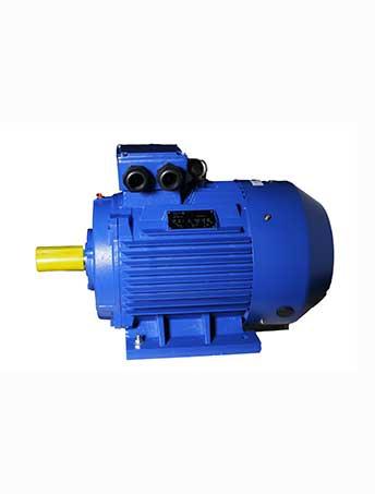 YE3系列三相异步电动机(高效率)