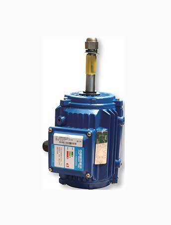 YCL3冷却塔专用三相异步电动机