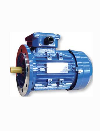 MS(IE2) series Three Phase Asynchronous Motors