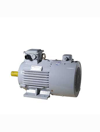 YVF2 series variable frequency adjustable speed three- -phase asynchronous motor