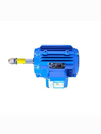 Extended shaft YE2 series Three Phase Asynchronous Motors(Non standard customization)