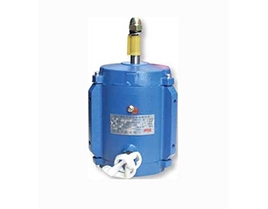 What are the three devices of the motor rotor? ——Permanent magnet motor supply